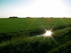 Hallig Hooge (Fotos: ctk)